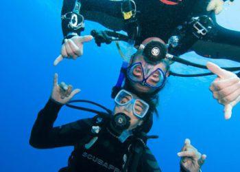 RDS button duikopleiding Padi Open Water Diver
