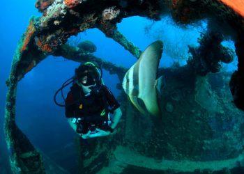 similans-diving-1